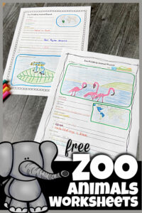 Here is a fun way to turn a trip to the zoo into a fun, educationalsceincefield trip! These zoo field trip worksheet will help your kids to explore the zoo more in-depth. We've included zoo animals worksheet for first grade, 2nd grade, 3rd grade, 4th grade, 5th grade, and 6th grade students. Plus preschool zoo activities including zoo coloring pagesperfect for toddler, preschool, and pre-k students. Finally create an animal report where kindergarten and elementary age students can draw animals they see and write down interesting information too. Simply download pdf file with zoo animal printables and you are ready to play and learn!