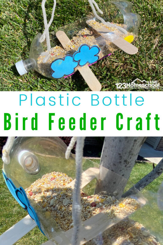 Bring nature to your backyard with cuteplastic bottle bird feeder craft! This easy-to-mke DIY bird feeder plastic bottle is fun for all ages