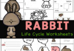 Teach kids about the life cycle of a rabbit with these free printable life cycle worksheets. Thisrabbit life cycleactivity is great for all.