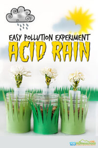 Help kids learn about the impact of pollution and the importance of protecting our earth and environment with thispollution experiment for kids. This simpleacid rain experimentis great for preschool, pre-k, kindergarten, first grade, 2nd grade, 3rd grde, 4th grade, 5th grade, and 6th graders. All you need are a few simple supplies ot try thisflower experiment where children can see first hand the impace ofacid rain on plants.Use thiswater pollution experiment for kids as part ofearth day science orearth science experiment.