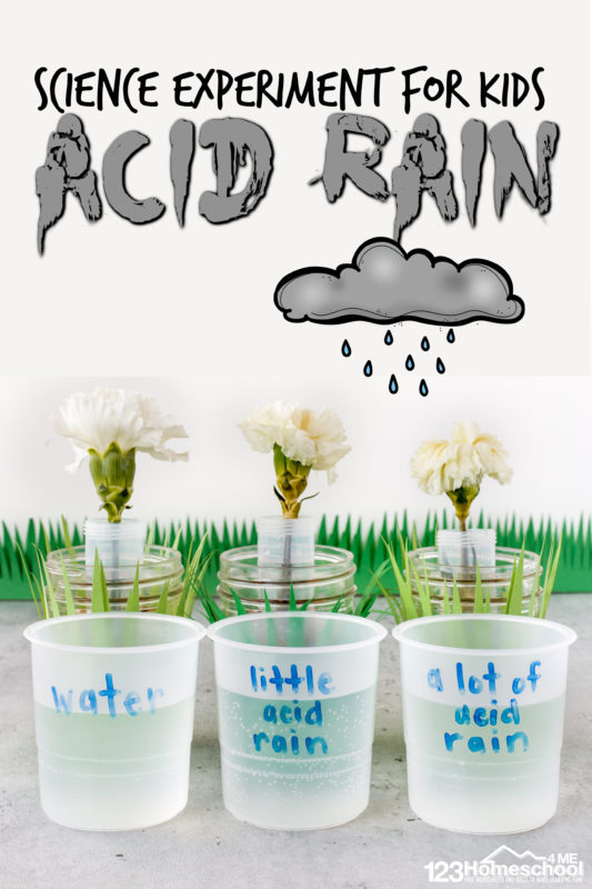 Learn about the impact of pollution with asimple pollution experiment for kids. This acid rain science experimentis great earth day science for all ages!