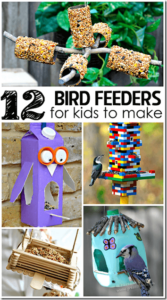 12 homemade bird feeders for kids to make