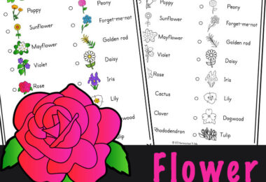 Learn about a variety of flowers for kids while enjoying this outdoor scavenger hunt idea. Download flower scavenger hunt to play the activity