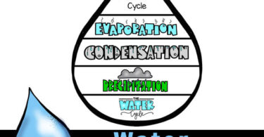 This Water Cycle Book is a free printable to learn about the cycle of water for hands-on science weather study w/ kindergarten, preschool, and Grade 1.