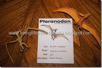 free printable dinosaur fact cards