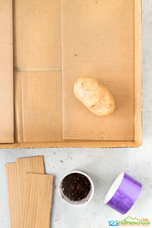 Potato Maze So what do you need to try this potato activity for kids? Just a couple simple materials you probably have laying around your house! box scissors masking tape sprouting potato moist soil small flower pot or container