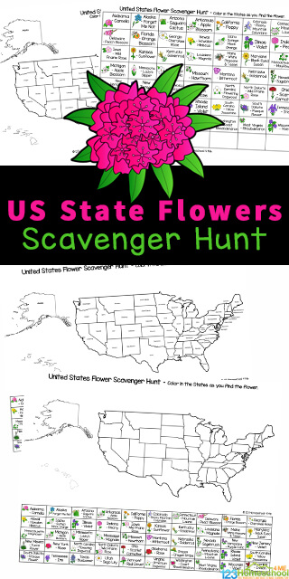 Kids will enjoy searching for the flower symbol of each of the 50 states of the US with this fun and free State Flowers Scavenger Hunt. This United States Scavenger Hunt is a fun and free USA Printables that is a fun activity for toddler, preschool, pre-k, kindergarten, first grade, 2nd grade, and 3rd grade students as it contains not only the name of the flower, but cute state flower pictures too. Simply printstate flowers of all 50 states pdf file in color or black and white and you are ready to play this printable scavenger hunt!