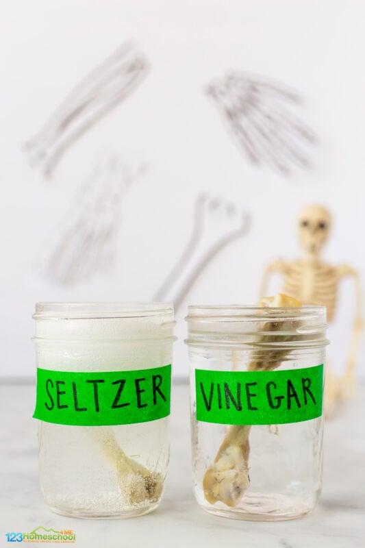 bending bones experiment