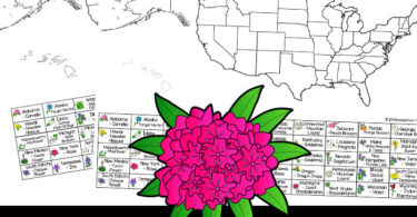Search for state flowers of all 50 US states with this United States Scavenger Hunt! Play these printable scavenger hunts with USA Printables!