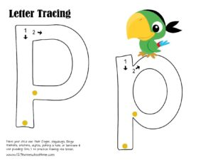 parrot letter p tracing page