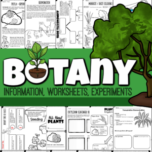 Learn about the amazingplants for kids in our world with this intersting and funbotany lesson for kids! From fascinating facts about plants for kids,plant worksheets, hands-onplant activities, creativeplant experiments, and eventests with answer keys to test what your child has learned, you will love this funprintable science lesson for kids! Use thisplant lesson with first grade, 2nd grade, 3rd grade, 4th grade, 5th grade, 6th grade, 7th grade, and 8th graders too.