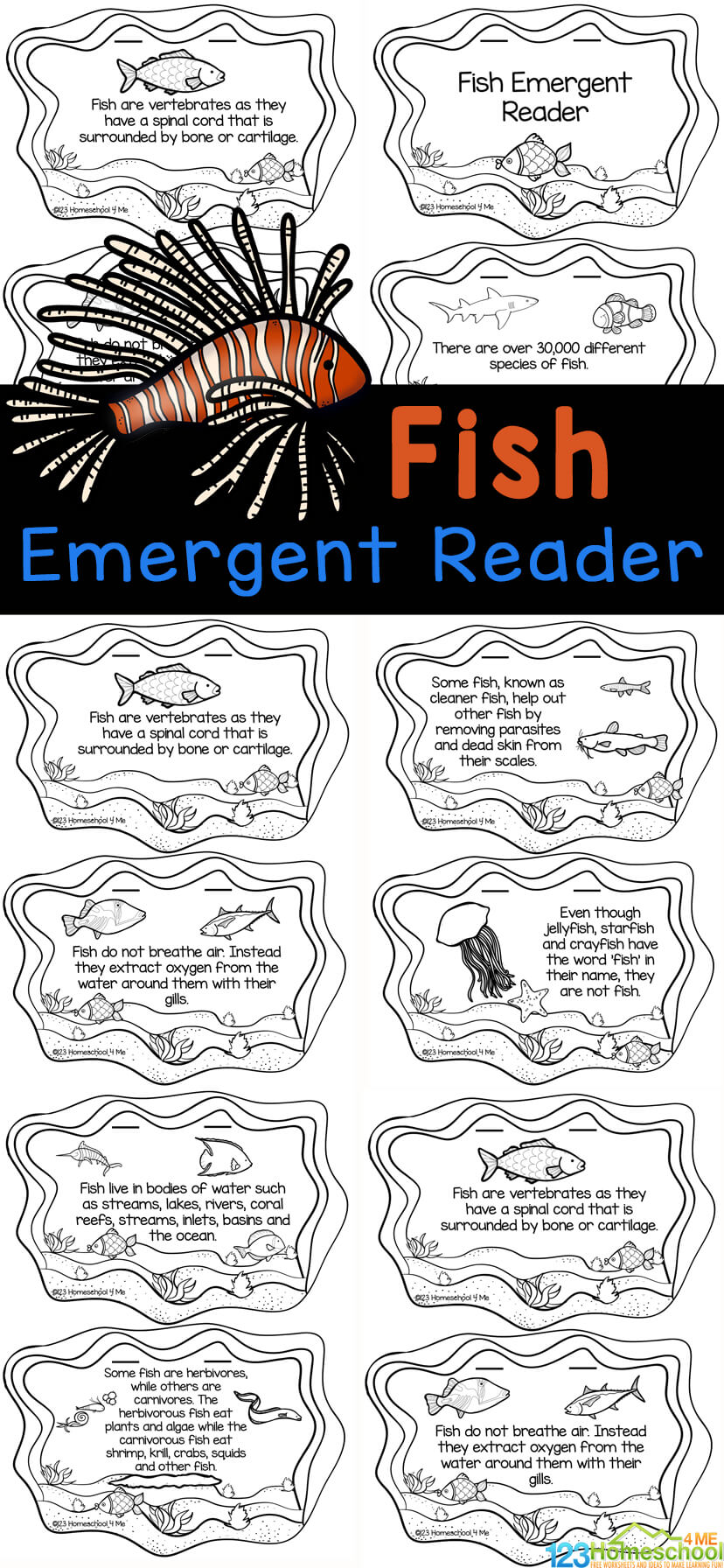 Dive under the set to learn all about fish! In this super cute fish printables preschool, pre-k, kindergarten, first grade, 2nd grade, 3rd grade, and 4th graders will learn fish facts for kids. In this fish for kids activity students will learn that fish are fertebrates, how fish breathe, the body temperature of a fish, about fish scales what fish eat, and so much more! Simply print theocean printable activity created in the shape of a pond to read, color, and learn about fish.