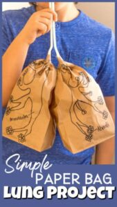 paper bag lungs for kids