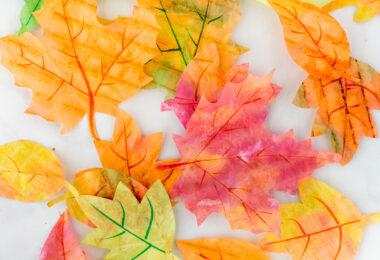 Autumn Leaves Craft