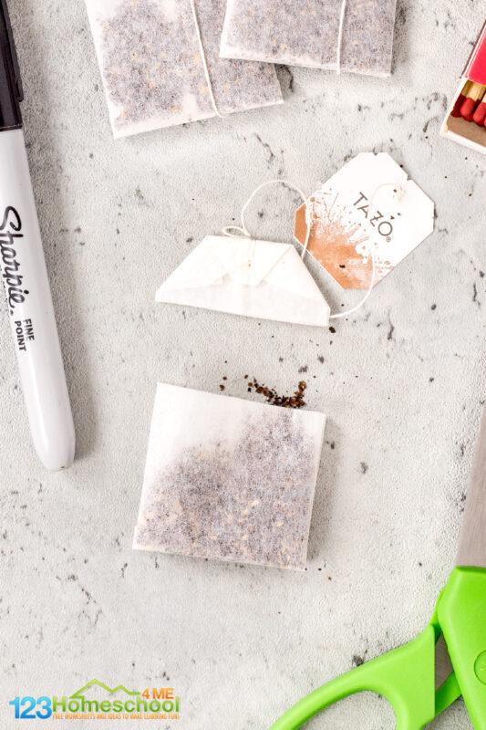 empty tazo tea bag for the experiment